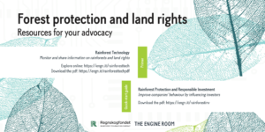 Forest protection and land rights resources for advocacy - twitter card