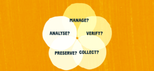 manage analyse verify collect.