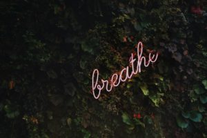 Neon letters spelling 'breathe' on a wall of leaves